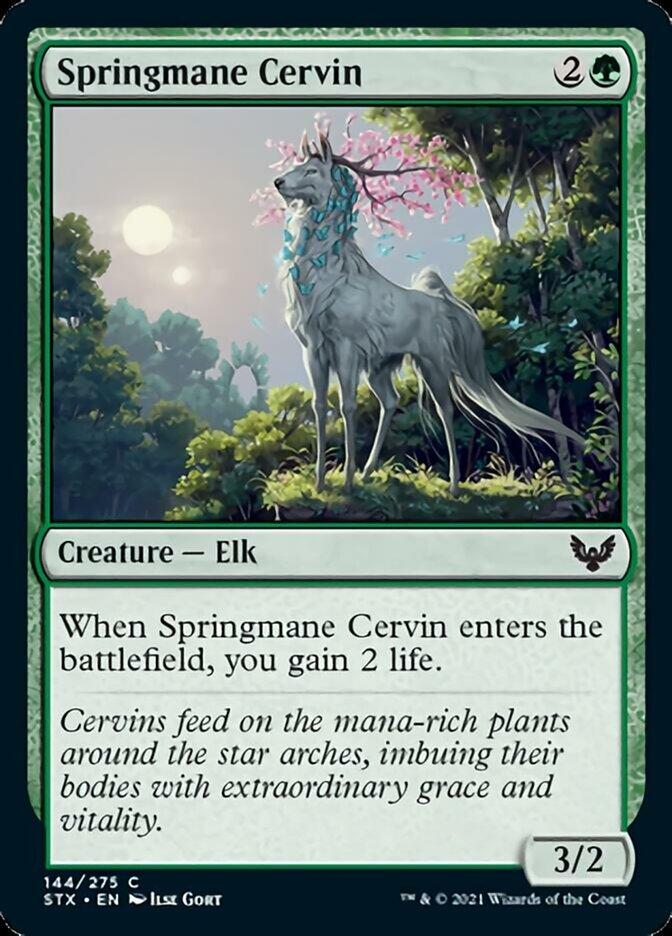 stx-144-springmane-cervin