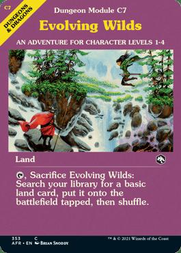Evolving_Wilds_EN